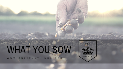 What You Sow – Royals Lesson!