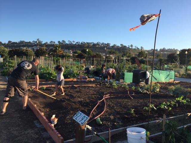 mathew-curran-cassie-jo-ziggy-rocket-garden-zirocksays