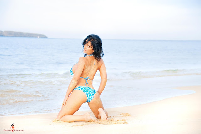 Denise-Milani-Big-Beach-hd-and-hq-photoshoot-image-35
