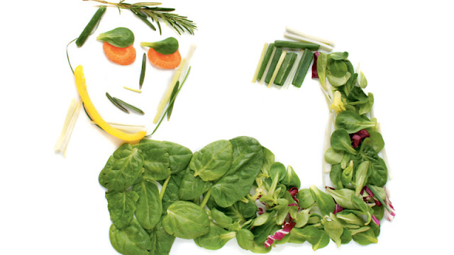 Interesting Facts And Information About Vegetarianism In Hindi Shakahar