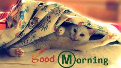 good morning images for facebook timeline