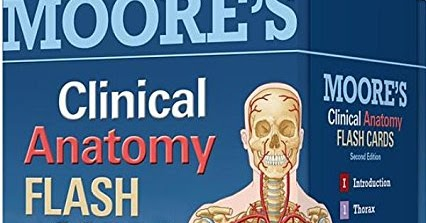 Clinical anatomy flash cards