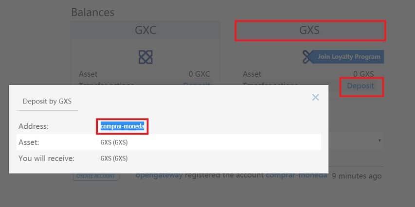 Cómo Usar Wallet GXS