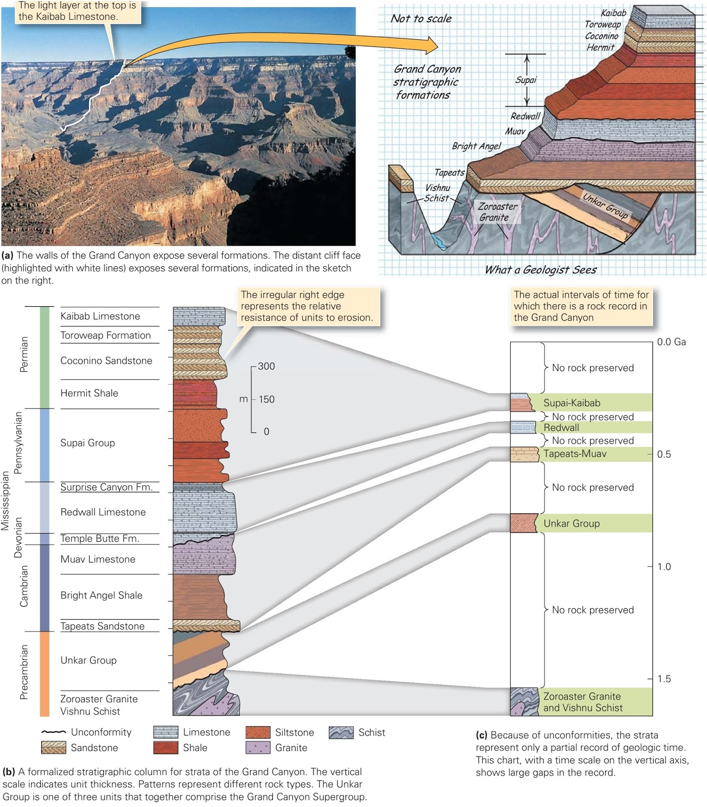 hight resolution of the stratigraphic formations and stratigraphic column for the grand canyon in arizona