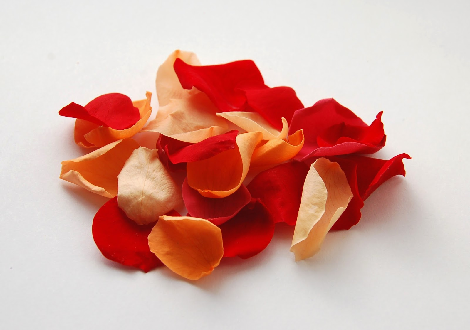 The Confetti Blog  Sunset Large Natural Rose Petals From
