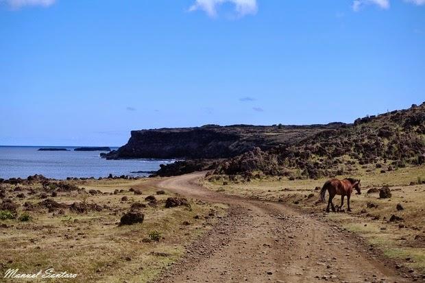 Isola di Pasqua, percorso costiero