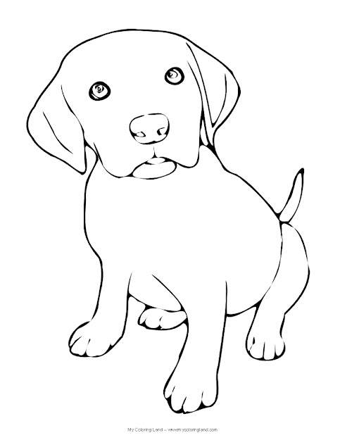Puppy Drawings Colouring Pages For Coloring Pages Draw