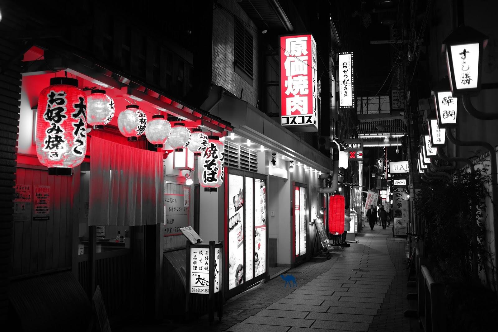 Le Chameau Bleu - Lanternes Rouges d'Osaka- Séjour au Japon