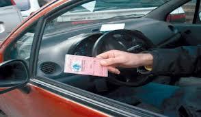 صورة سائق يظهر رخصة السياقة بالجزائر
