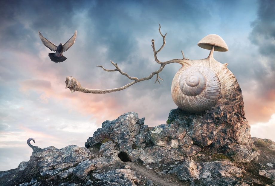 12-Home-Peter-Cakovsky-Photo-Manipulations-Create-Surreal-Scenes-www-designstack-co
