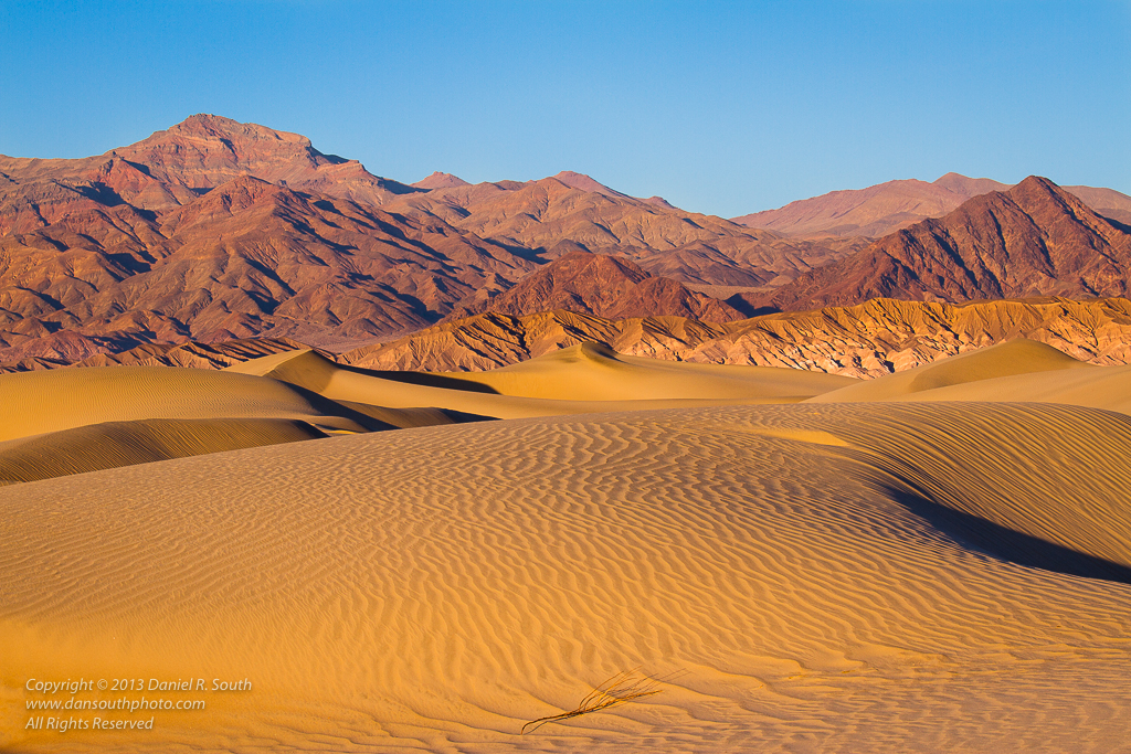 a photo of the mesquite sand dunes in death valley daniel south photography