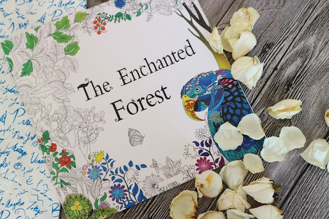 Banggood The Enchanted Forest Painting Book