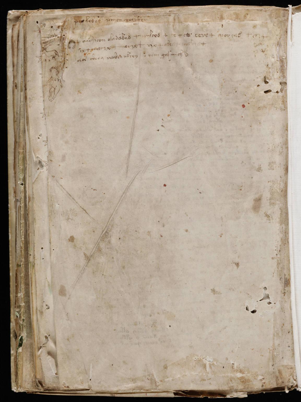 manuscrito204