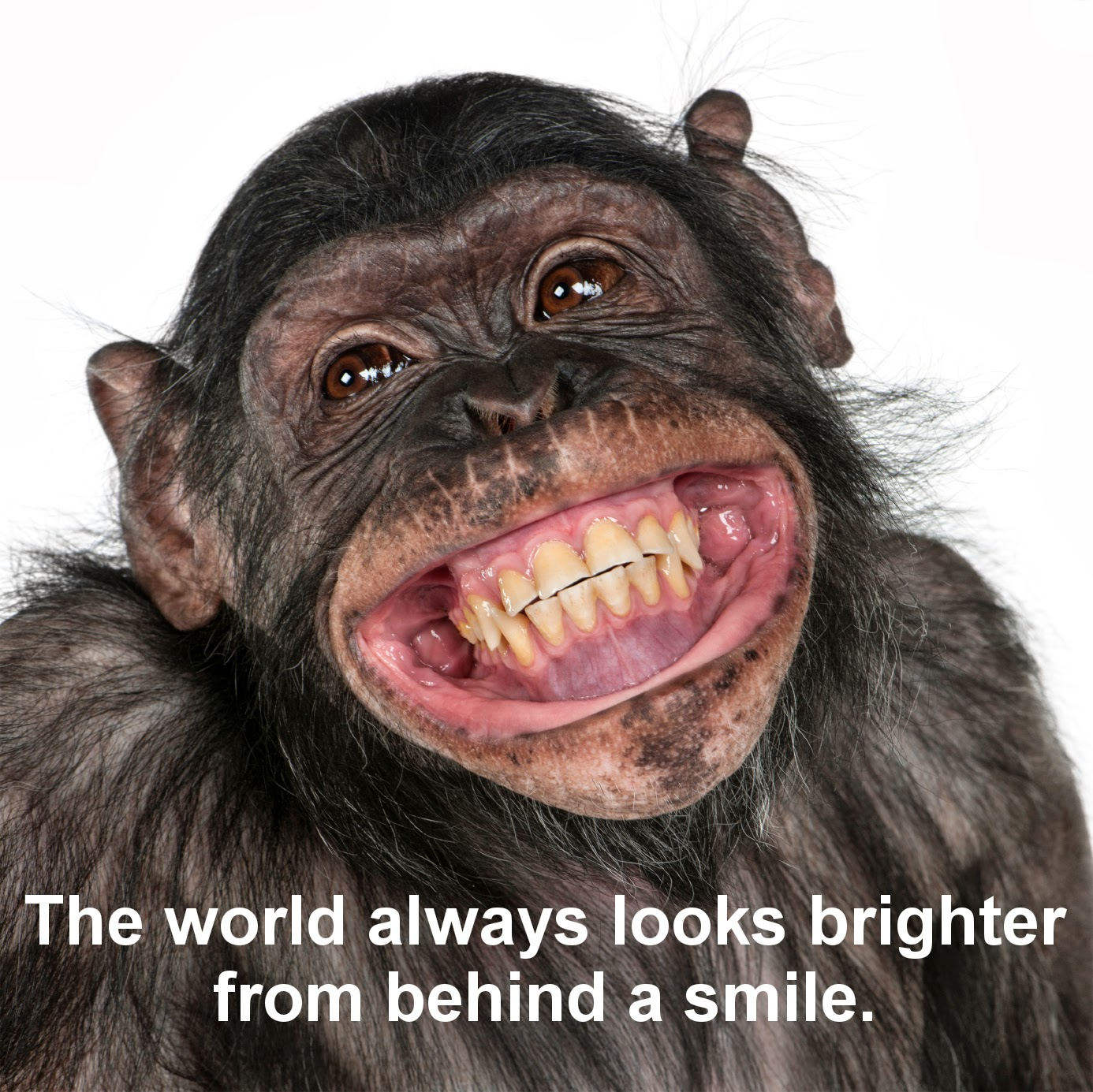 Smile And Laugh Images