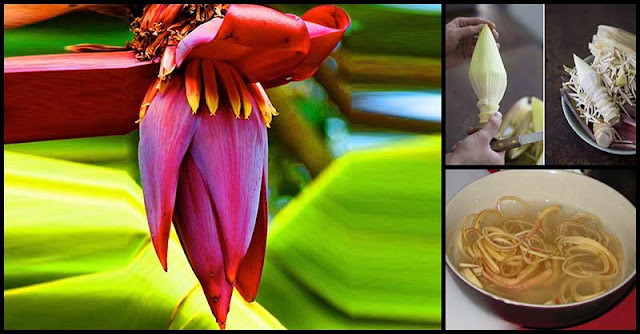 Help Fight Anemia With Banana Blossoms
