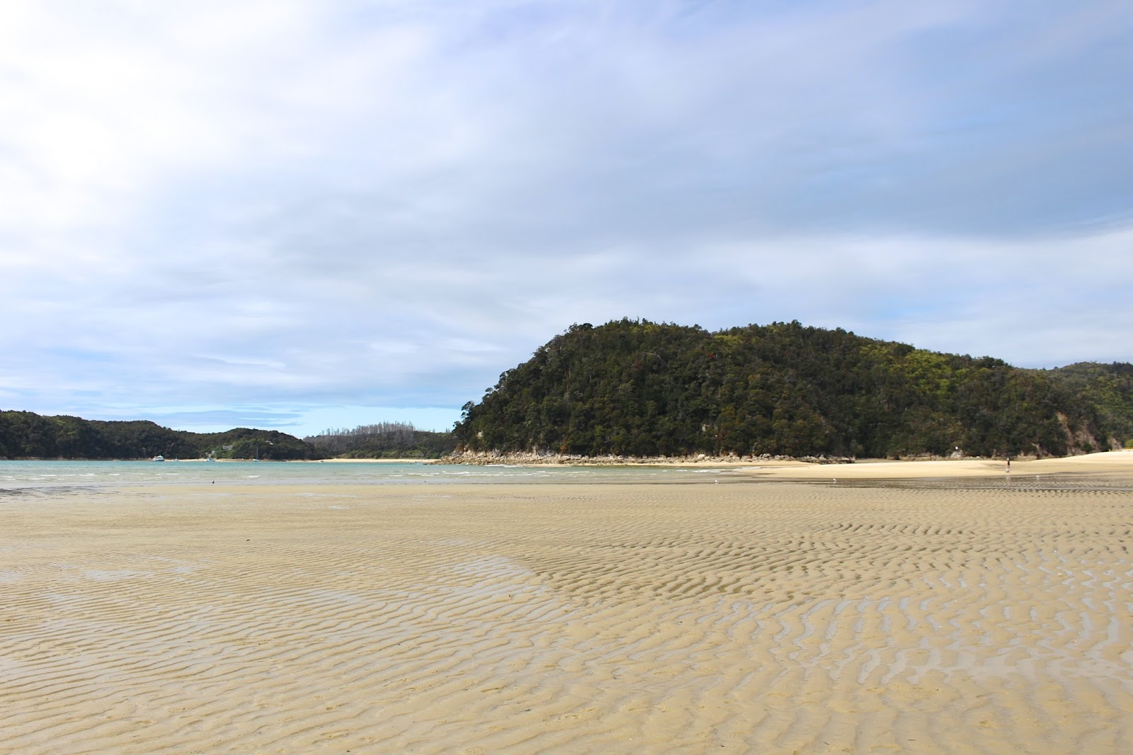 New Zealand's Best Hikes | Abel Tasman Coastal Track