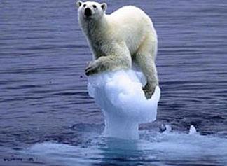 https://www.jbn.de/kampagnen/klimawandel/klimawandel-erklaert/