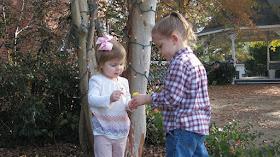 Kinder streiten sich um Butterblume