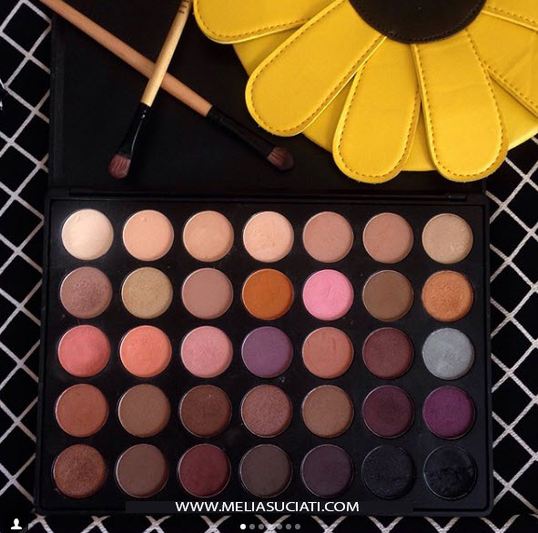 Morphe 35W Palette (Review and Swatches)