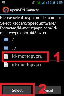 Memilih file Openvpn