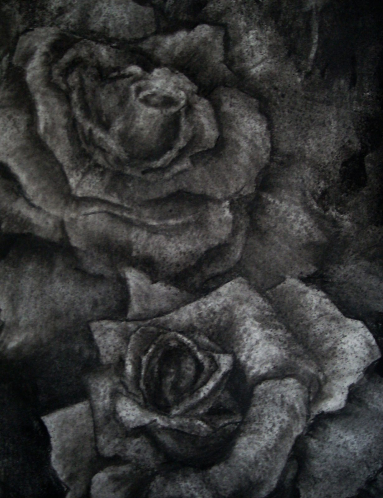 This is a graphic of Luscious Charcoal Rose Drawing