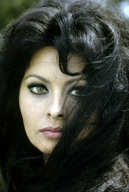 Film Noir Photos The Eyes Have It Sophia Loren