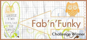 Won Challenge #210 at Fab 'n' Funky