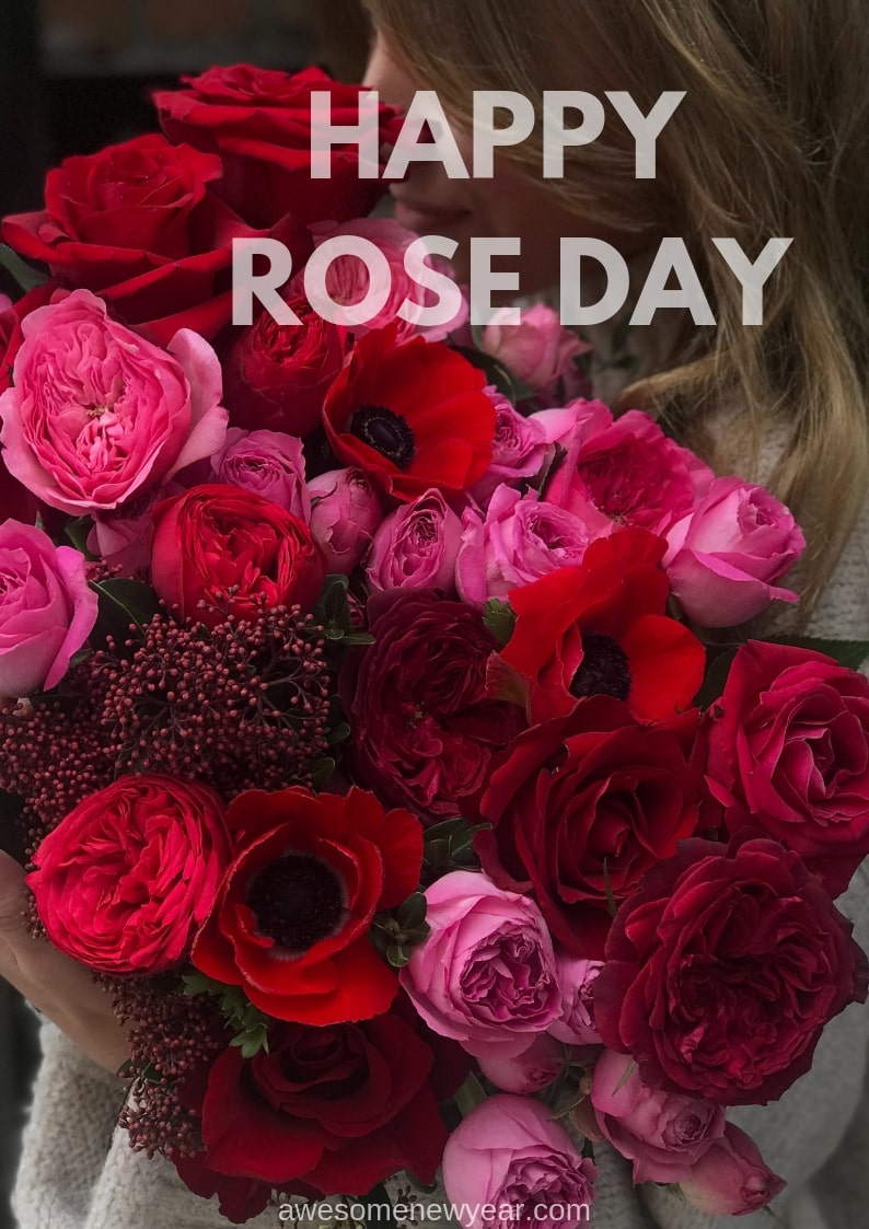 36 Beautiful Happy Rose Day Images To Send Your Loverhusband