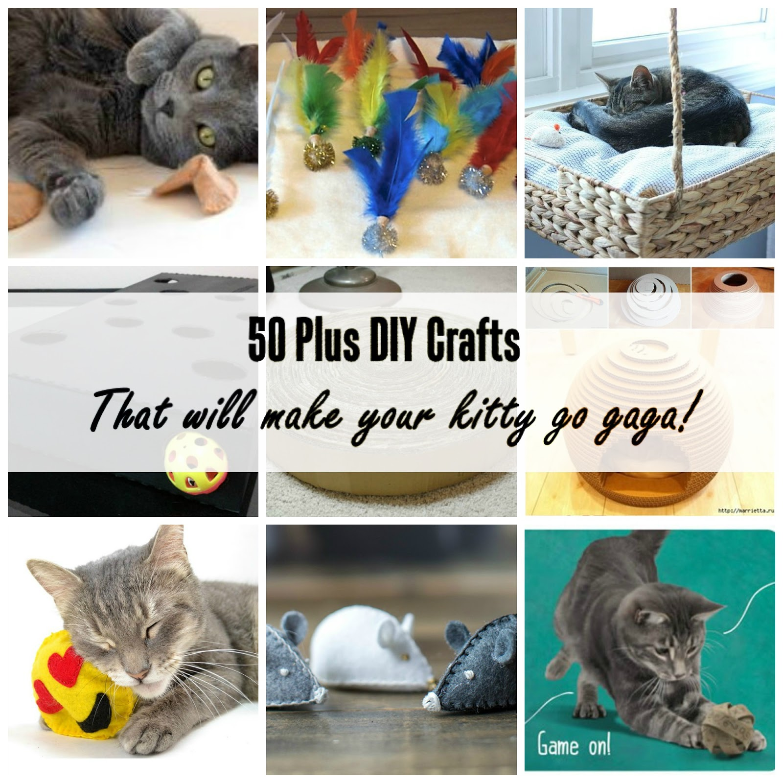 Over 50 DIY Crafts Toys and Treats for Cats