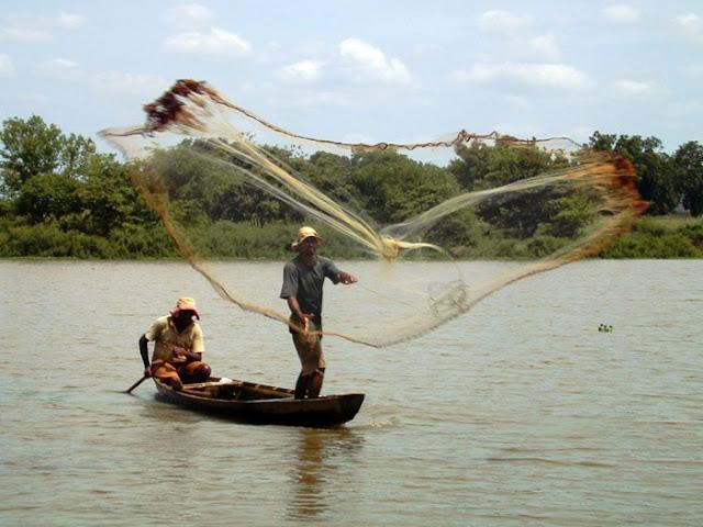 Resultado de imagem para pescador do Rio Mearim
