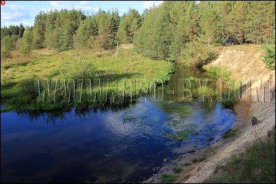 Налибокская пуща. Река Усса