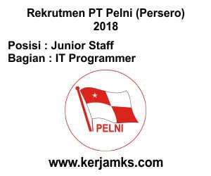 Lowongan Kerja IT Programmer - Junior Staff PT PELNI (Persero)