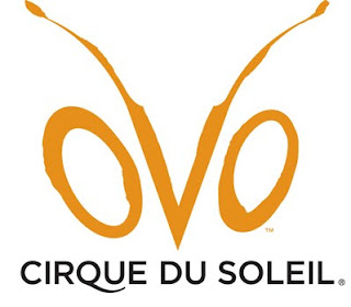 Espetáculo OVO – Cirque du Soleil