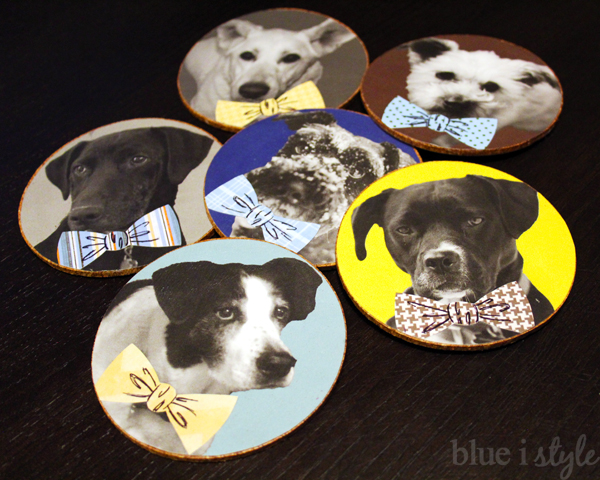 debonair menswear dog coasters craft project