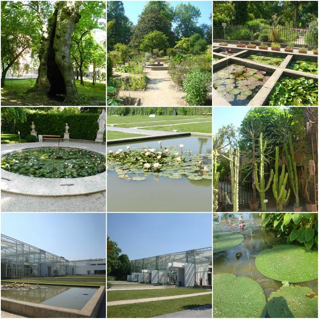 O que fazer em Padova (Pádua) além do Santo Antônio - Orto Botanico
