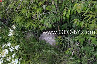 Камни на опушке леса у деревни Химороды