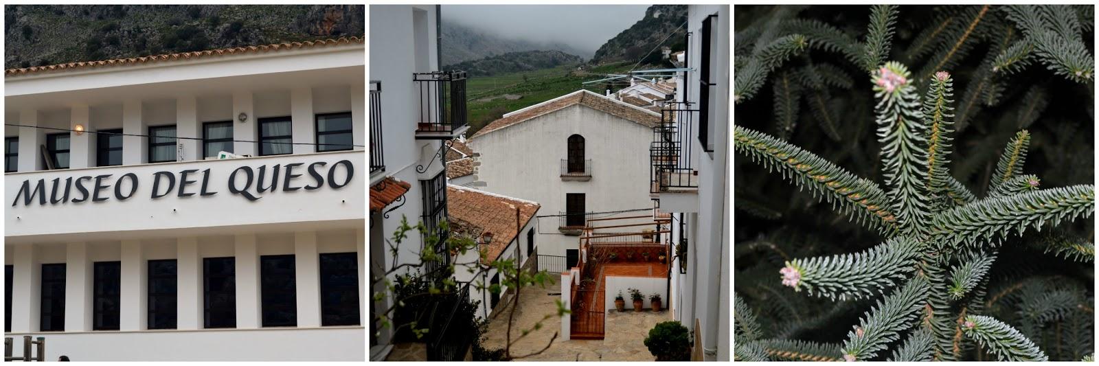 Villa Lena B B Turi