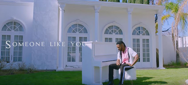 Mr Flavour - Someone Like You Video