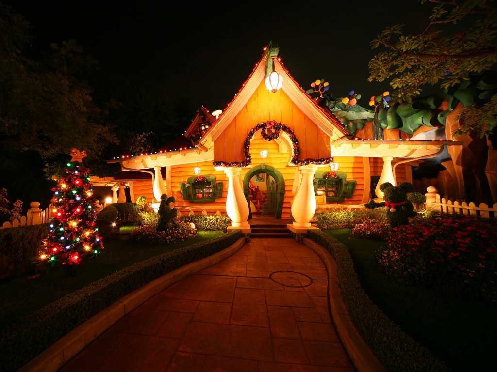 Christmas Home Lights Decorating Ideas Pictures Pixhome