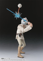 Luke Skywalker S.H. Figuarts- Allenamento