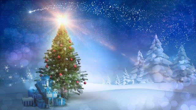 Pohon Natal, Christmas Tree, Xmas tree