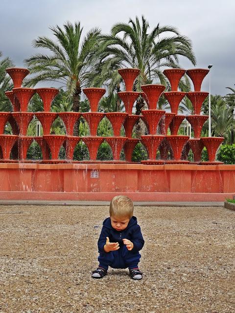 ogromny gaj palmowy w Hiszpanii, co zobaczyć na Costa Blanca?