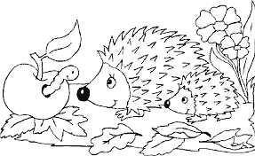 Best Images Of Mini Hedgehogs Coloring Pages For Print Online