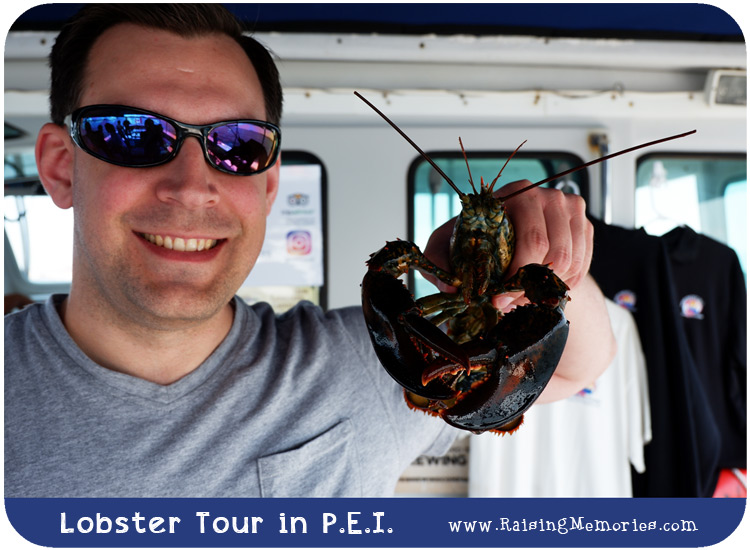 Top Notch Lobster Fishing Tour