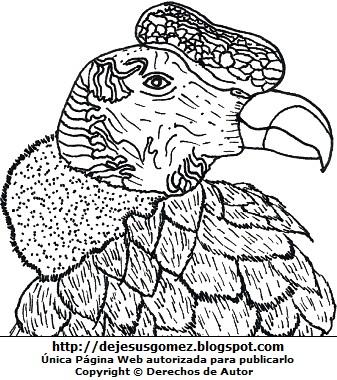 Dibujo de la cabeza de cóndor andino o condor de los Andes para colorear, pintar o imprimir. Dibujo de condor hecho por Jesus Gómez