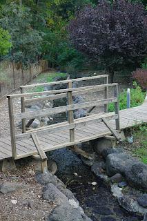 גשר עץ -נחל הבשן