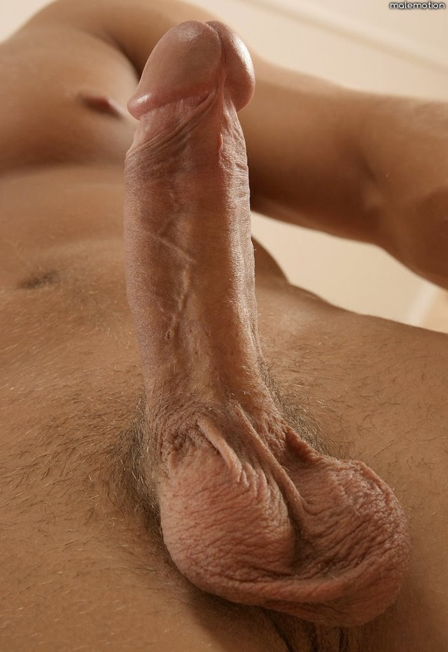 Huge beautiful cocks
