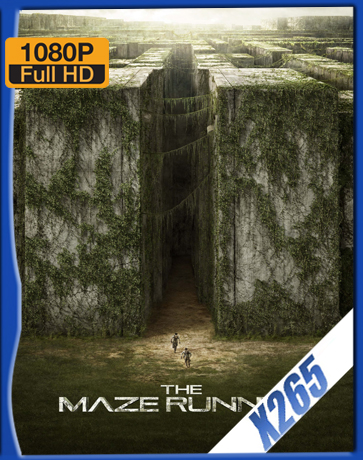The Maze Runner [2014] [Latino] [1080P] [X265] [10Bits][ChrisHD]
