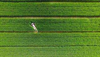 Saat ini sedang berkembang yaitu fenomena berfoto dengan kamera drone saat traveling.