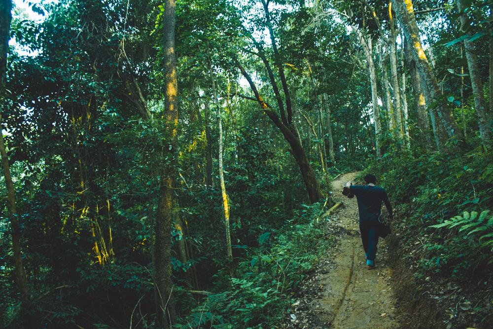 Tempat Wisata Puncak Gunung Pilar Anyer